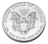 American Eagle Silber Rückseite